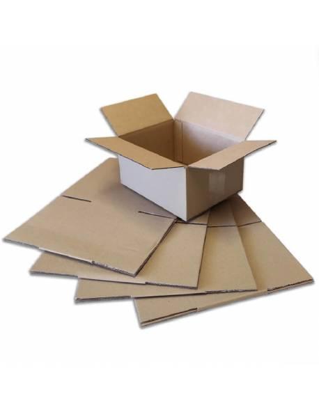Kartoninė dėžė (M) 220x170x110mm