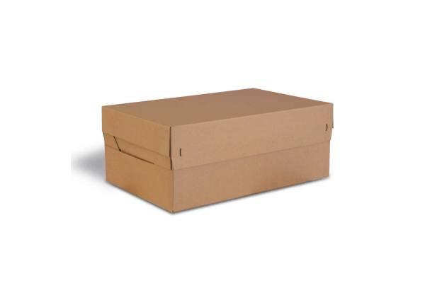 Dviejų dalių dėžės dangtis CP154, 577x389x97mm